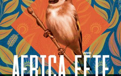 Participation au festival Africa Fête